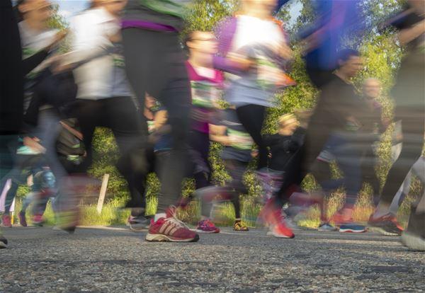 © copy: varruset.se, Massor av springande fötter