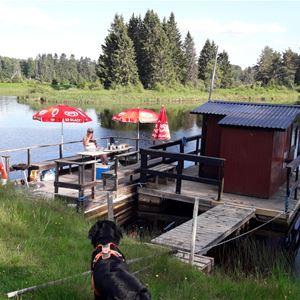 Brygga med räcke och ett litet hus på flotte i en sjö med grönska runtomkring.