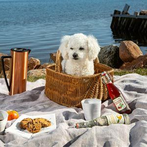 Picknickdagen på Smakbyn