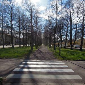 Lindarnas dag i Esplanaden i Mariehamn