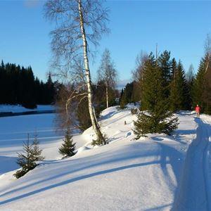 En vinterväg med snö och istäckt vattendrag vid sidan om.