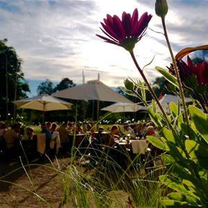 Grillkväll på Wij Trädgårdar