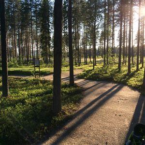 Berättarcafé – så fick bygden sin golfbana