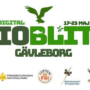Digital Bioblitz Gävleborg