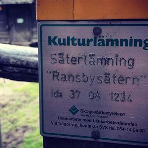 STF Ransbysätern