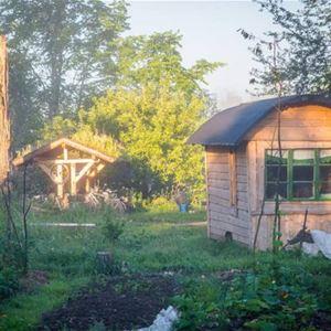 Tiny House i lummig grönskande trädgård.