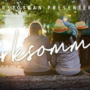 Foto: Storsjöyran,  © Copy: Storsjöyran, Parksommar med Albin Lee Meldau