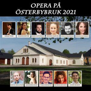Opera på Österbybruk – Carmen (entré biljett)