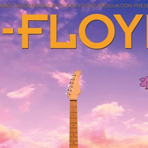 Concert - P-Floyd / Coming Back to Life Tour