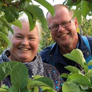 Ax-plåck i äppelträdgården hos Öfvergårds i Tjudö