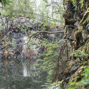 A. Fryxell,  © A. Fryxell, Bergvägg med växtlighet och vatten runtom.