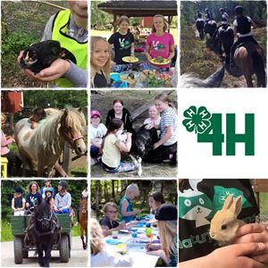 Gratis djurläger för barn från 6 år
