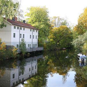 Vandringar i Hammarby