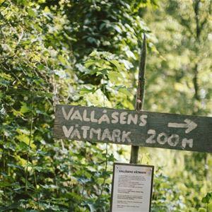 STF Vallåsens Värdshus