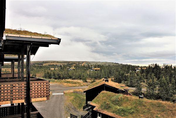 Utsikt fra leilighet mot Nevelfjell