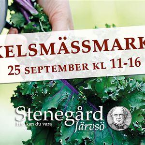 Mickelsmässmarknad på Stenegård