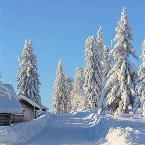 Fina skidspår i norra Garberg.
