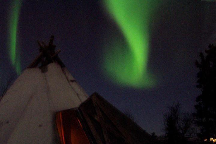 Doglsedding in the Arctic Night - Tromsø Villmarkssenter