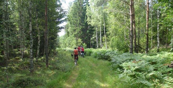 Cykla lugnt eller träna hårt i Lugnås