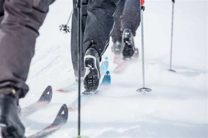 Abisko - Try out Nordic skis