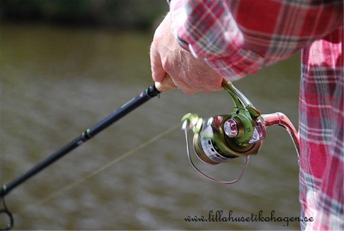 Fiska i Tyresös skärgård & sjöar
