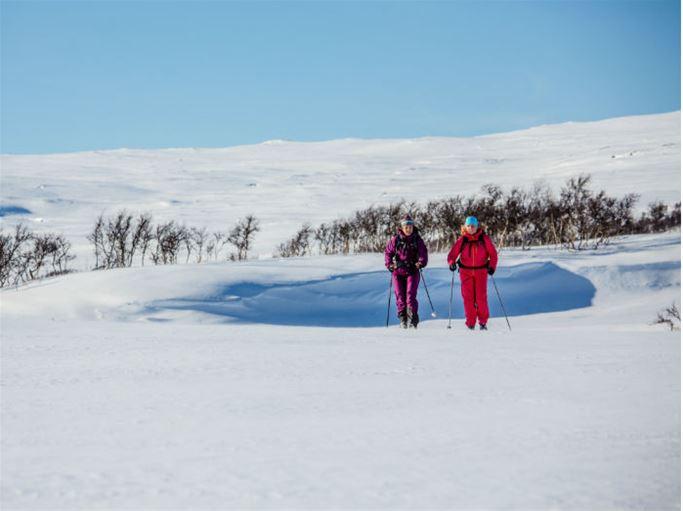 Jämtland - Mittskanderna runt