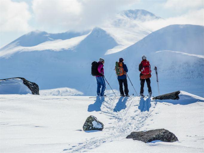 Fjällpärlor i Lappland